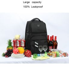 DENUONISS Insulated Picnic Backpack Thermo Beer Cooler Bags Refrigerator For Women Kids Thermal Bag 2 Compartment Outdoor Hiking