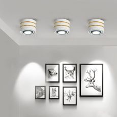 Rotatable Angle LED Ceiling Lights Dimmable 5W 7W 9W 15W 3000K/4000K/6000K Ceiling Spot Light