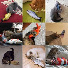 Cat Toy Fish USB Electric Charging Simulation Fish Catnip Cat Pet Chew Bite Interactive Cat Toys