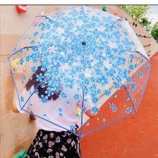 Creative Transparent Umbrella Automatic Umbrella Windproof Flower Scattered Color Petal