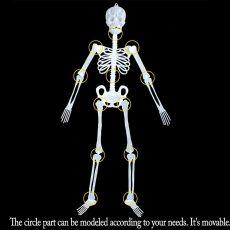 1pc Halloween Human Bones Skeleton Posable Joints Luminous Full Body Halloween Party Decoration